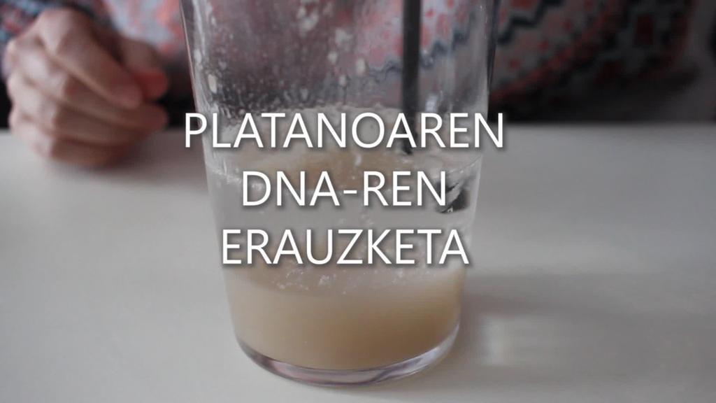 Zientziaenea 3