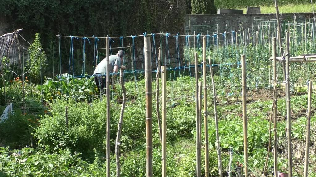 Ordiziako udalak baratze parkean eginiko handitzearen ostean 24 lurzati berri eskaini dituzte