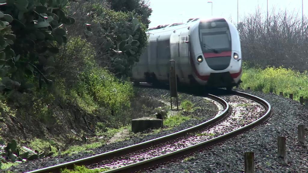 CAF-ek hainbat tren hornitzeko kontratua eskuratu du Suedian