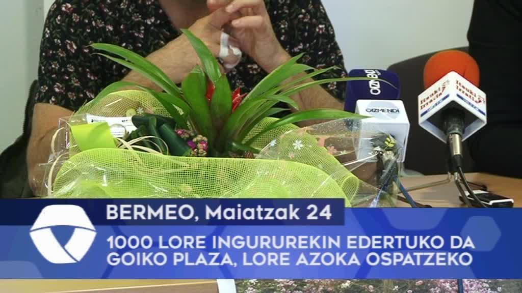 1.000 lore ingururekin edertuko da Bermeoko Goiko Plaza lore azoka berezia ospatzeko