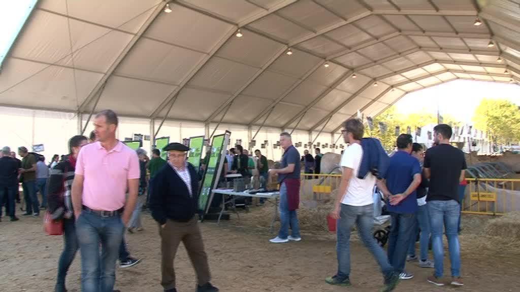 GERNIKA-LUMOKO URRIKO LEHEN ASTELEHENA 2019