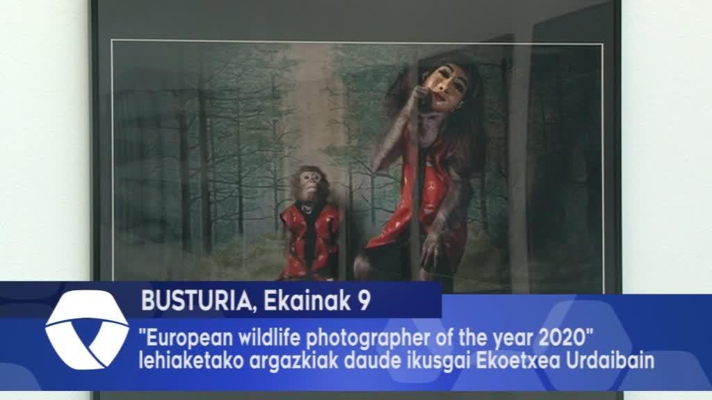 -European Wildlife Photographer of the Year 2020- lehiaketako argazkiak daude ikusgai Ekoetxea Urdaibain