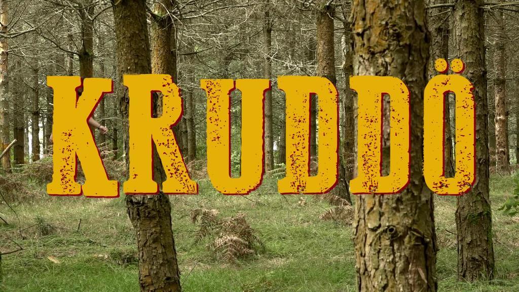 Kruddo musika taldea