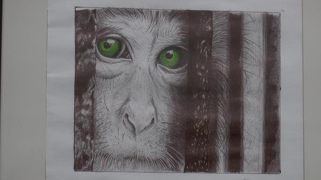 """Ander Ortiz de Muruaren """"Aldaket-Art"""" erakusketa ikusgai Gurea antzokian"""