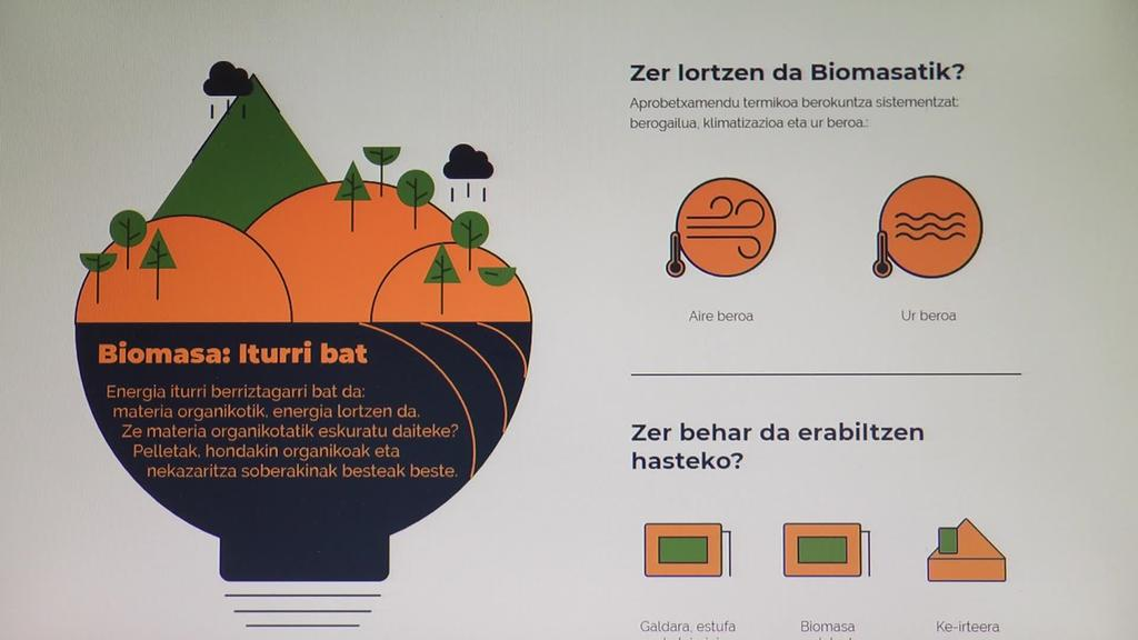 Eskualdeko basoen eta biomasaren inguruko hausnarketa egin du Tolosaldea Garatzenek