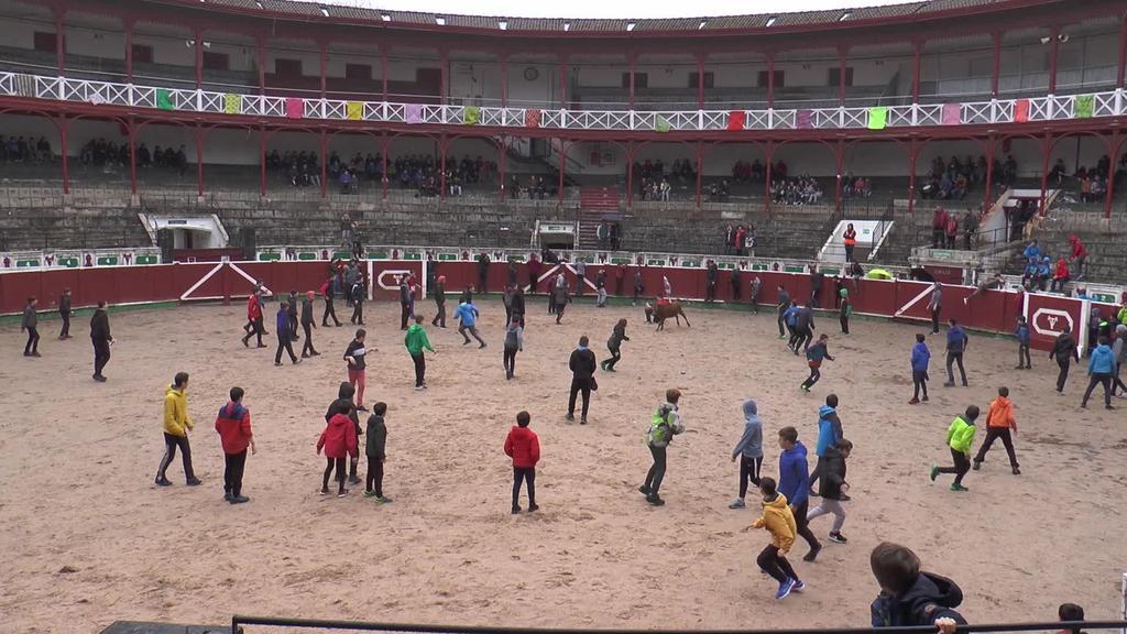 Zezen festa Piñata igandean