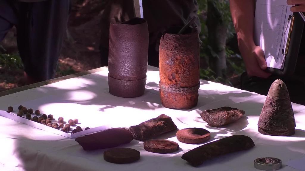 Estatu osotik etorritako 20 gazte, oroimen historikoaren  programan, Belkoain inguruko lurretan ibili dira lanean