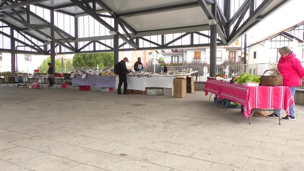 Ostegunero egingo dute azoka Zizurkilgo Joxe Arregi plazan