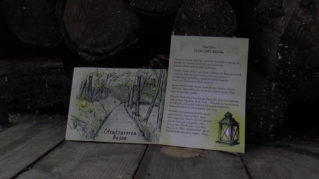 Abenduaren 16tik 23ra Olentzaroren Basoaren magia bizi ahal izango da Elosegi Parkean
