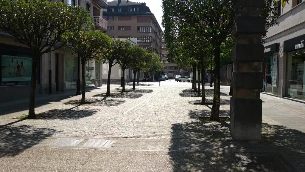 211 koronabirus kasu daude Tolosaldean