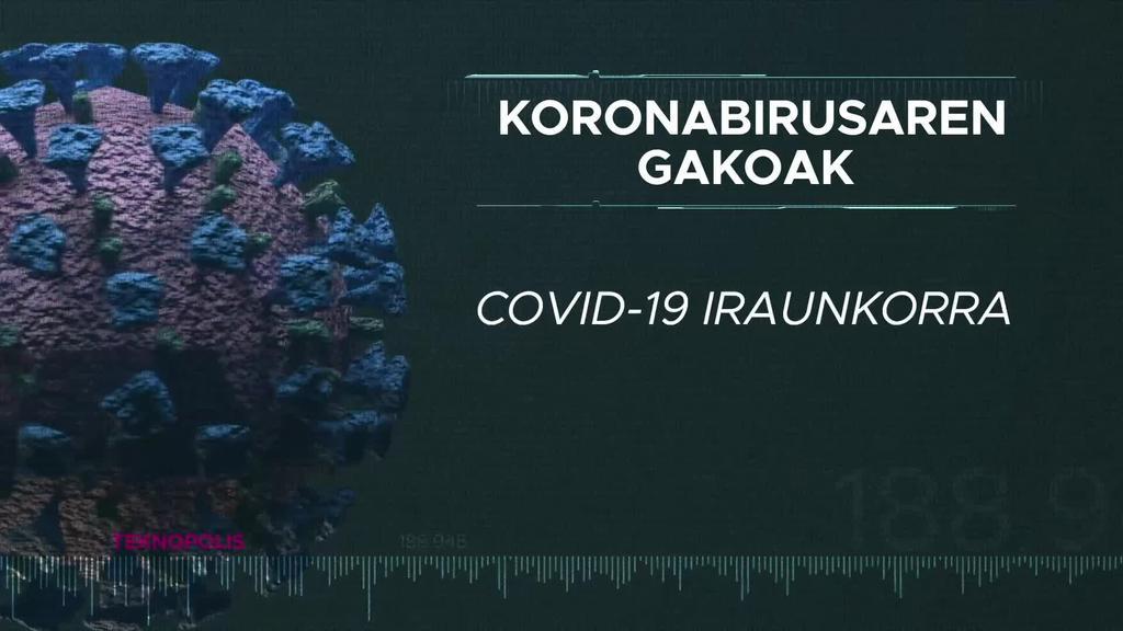Koronabirusaren gakoak: Covid-19 iraunkorra