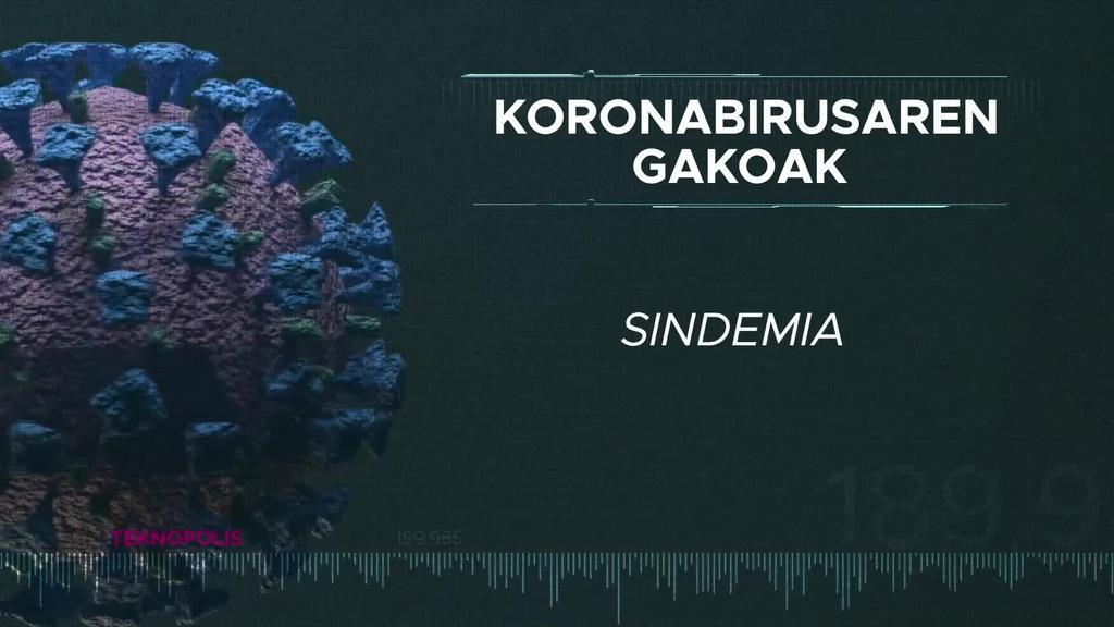 Koronabirusaren gakoak: Sindemia