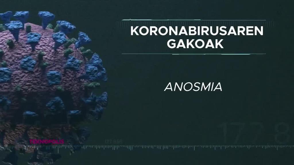 Koronabirusaren gakoak: Anosmia