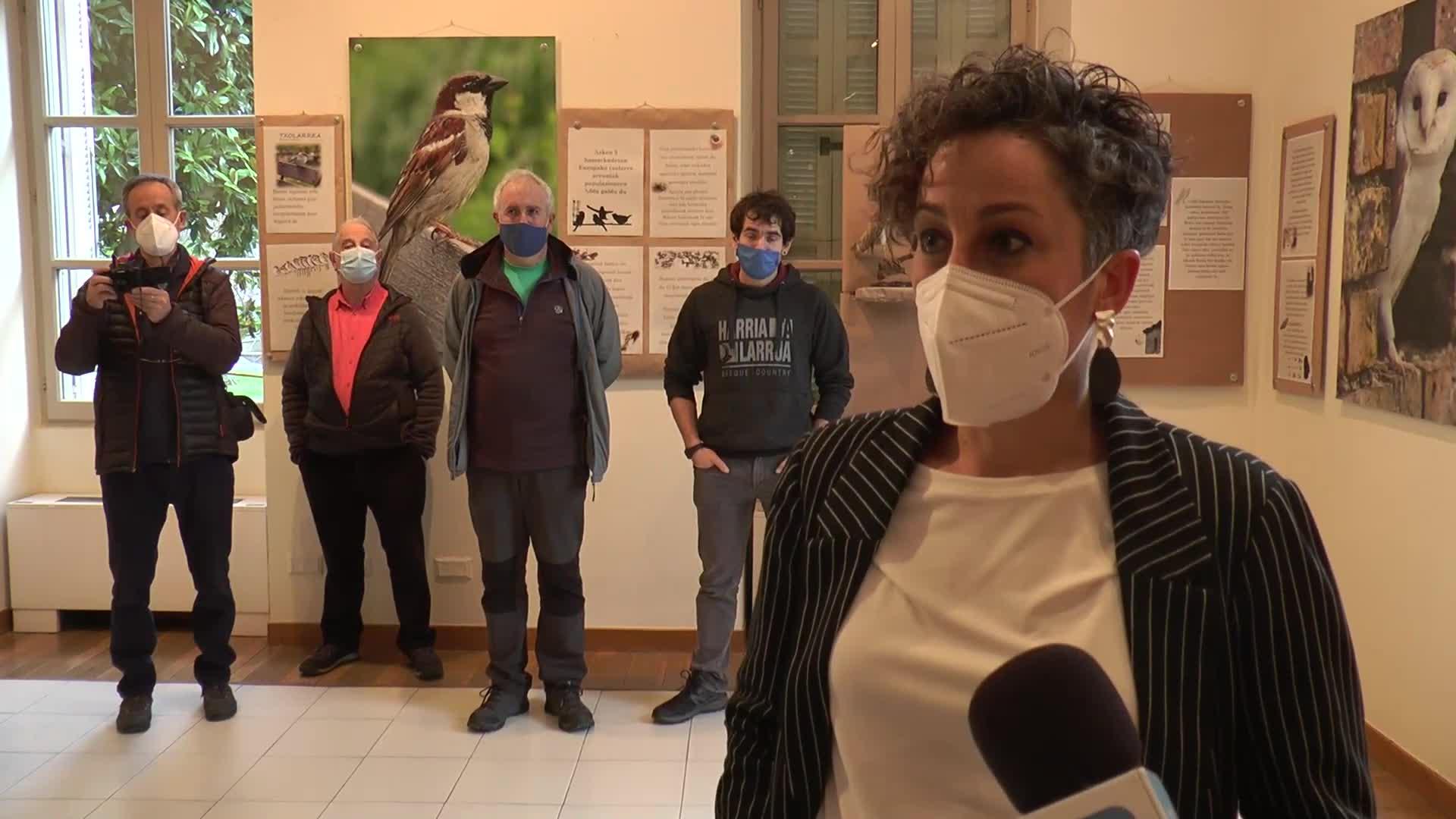 Erakusketa zabaldu dute Sanz Enean, herritarrek Oñatiko herriguneko biodibertsitatea ezagutzeko
